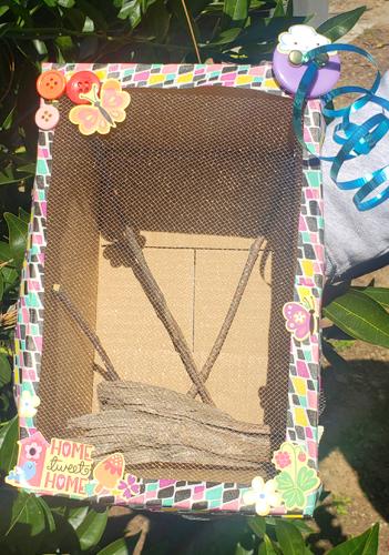 Hábitat de la mariposa portadora de crisálida