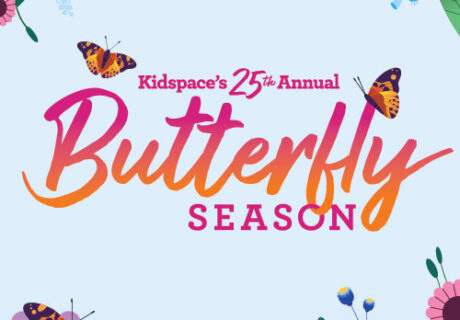 Butterfly Season logo with flowers