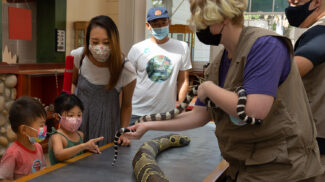 2 children and their family encounter a snake